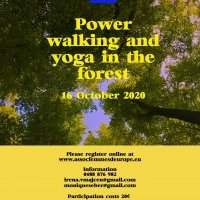 Power walking and yoga in the forest - Friday 16 October 2020 14:00